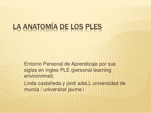 LA ANATOMÍA DE LOS PLES Entorno Personal de Aprendizaje por sus siglas en ingles PLE (personal learning environmnet) Linda...