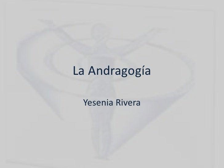 La Andragogía Yesenia Rivera