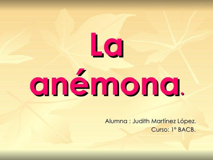 La anémona . Alumna : Judith Martínez López. Curso: 1º BACB.
