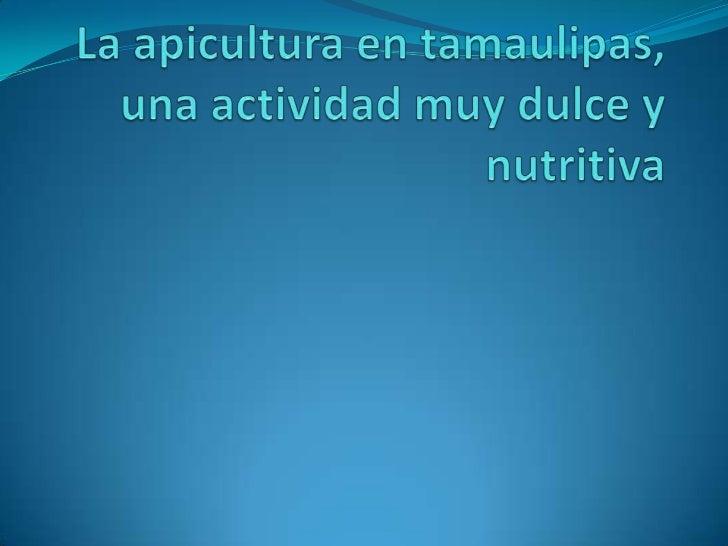 La apicultura en tamaulipas, una actividad muy dulce y nutritiva<br />