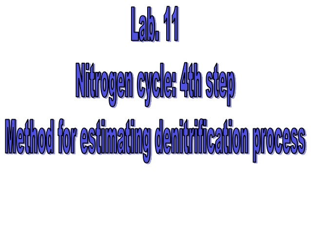 Lab.11 methods for estimating denitrification process