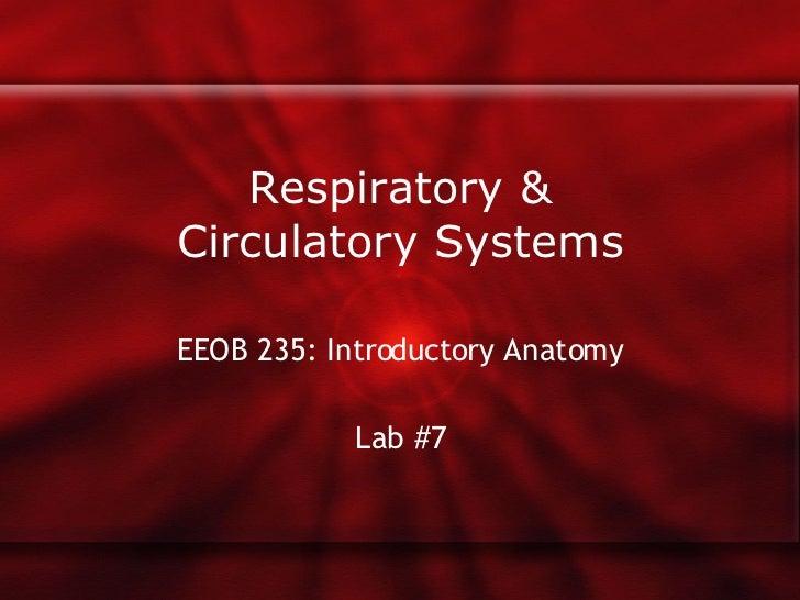 Respiratory & Circulatory Systems EEOB 235: Introductory Anatomy Lab #7
