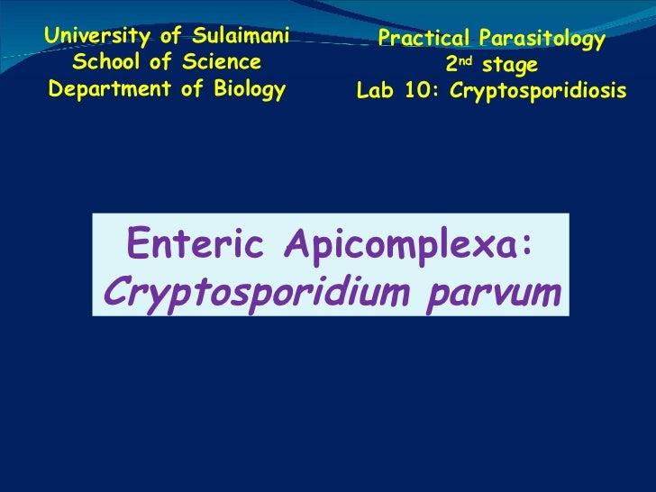 Lab 10  cryptosporidiosis