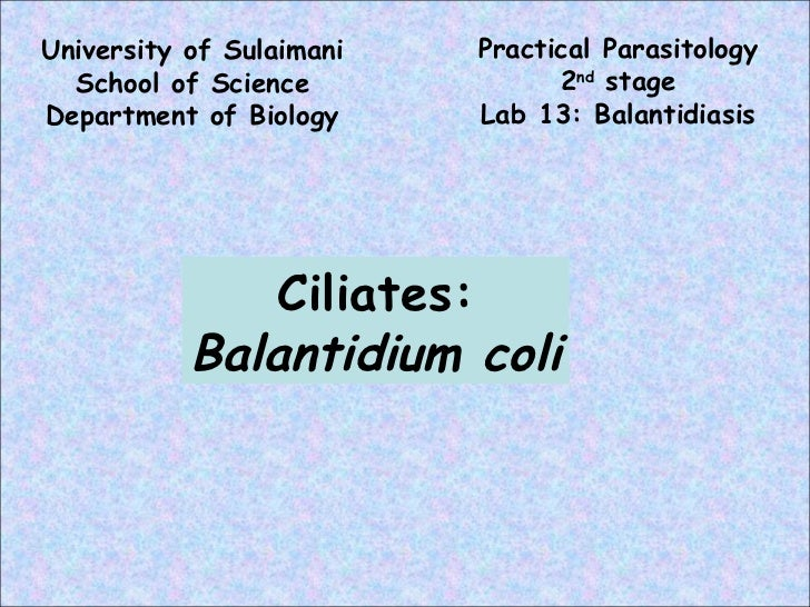 University of Sulaimani School of Science Department of Biology Practical Parasitology 2 nd  stage Lab 13: Balantidiasis C...