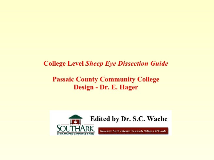 College Level  Sheep Eye Dissection Guide Passaic County Community College Design - Dr. E. Hager Edited by Dr. S.C. Wache