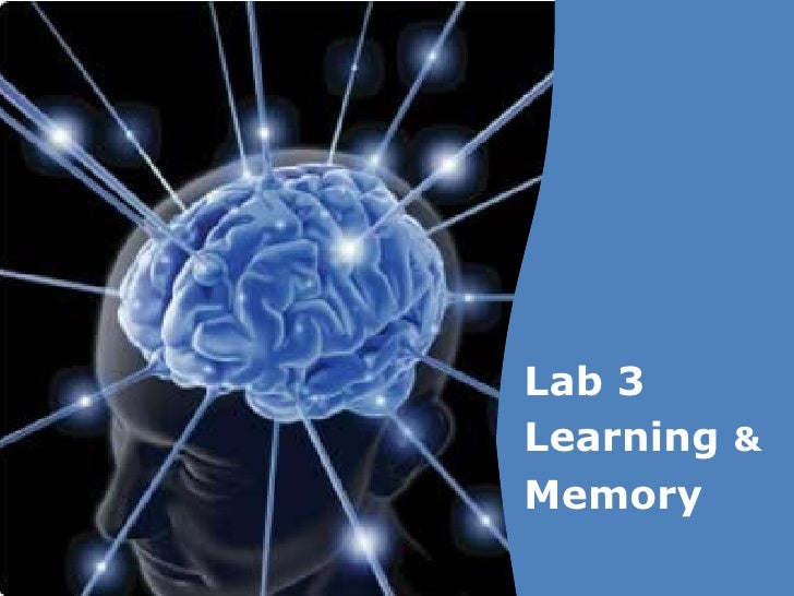 Lab 3 Learning  & Memory
