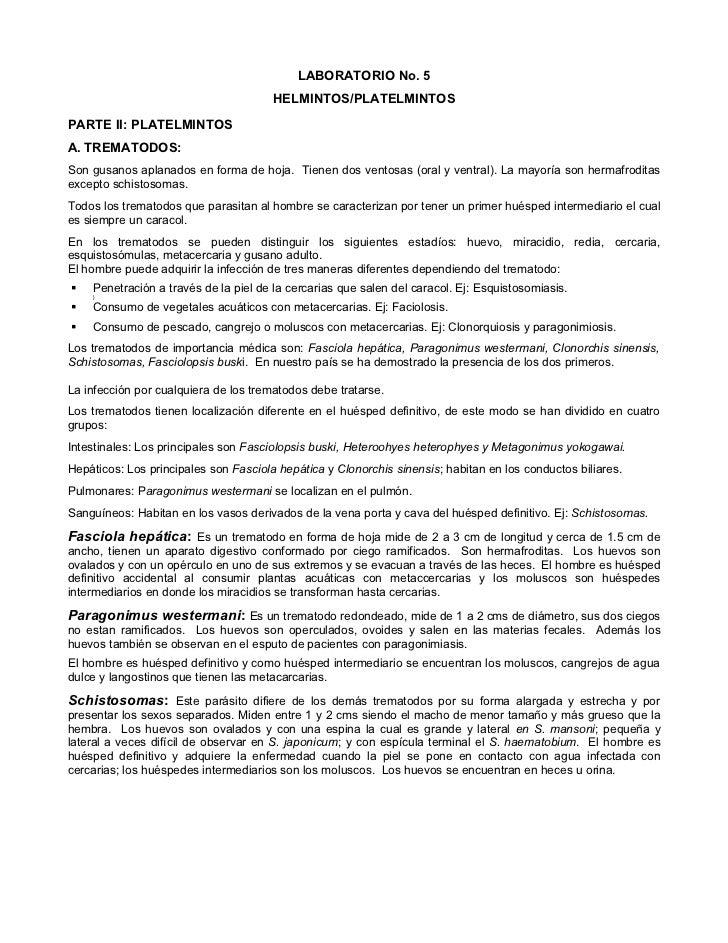 LABORATORIO No. 5                                       HELMINTOS/PLATELMINTOSPARTE II: PLATELMINTOSA. TREMATODOS:Son gusa...