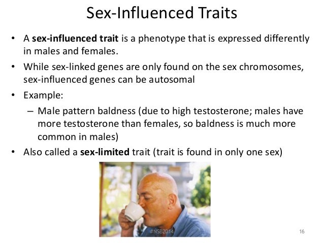 What is a sex influenced trait and sex limited trait