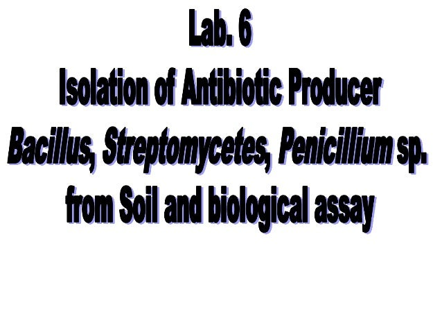 Lab 6 isolation of antibiotic producer from soil