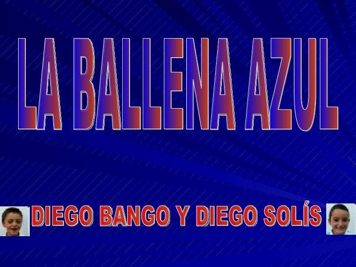 LA BALLENA AZUL DIEGO BANGO Y DIEGO SOLÍS