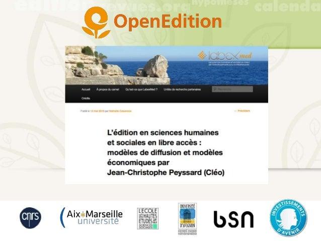L'édition en sciences humaines et sociales en libre accès : modèles de diffusion et modèles économiques par Jean-Christoph...
