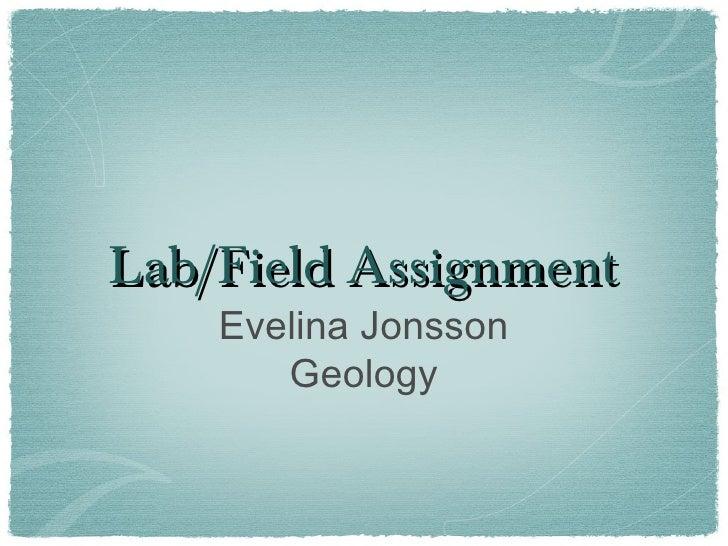 Lab fieldevelinajonsson