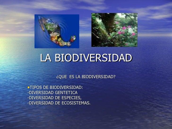 LA BIODIVERSIDAD <ul><li>¿QUE  ES LA BIODIVERSIDAD? </li></ul><ul><li>TIPOS DE BIODIVERSIDAD: </li></ul><ul><li>-DIVERSIDA...