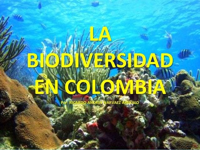 LABIODIVERSIDAD EN COLOMBIA   Por: RICARDO ANDRES NARVAEZ AREVALO