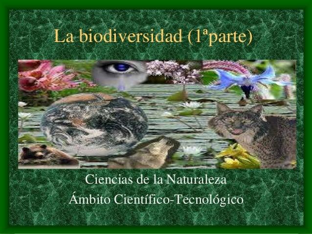 La biodiversidad (1ªparte) Ciencias de la Naturaleza Ámbito Científico-Tecnológico