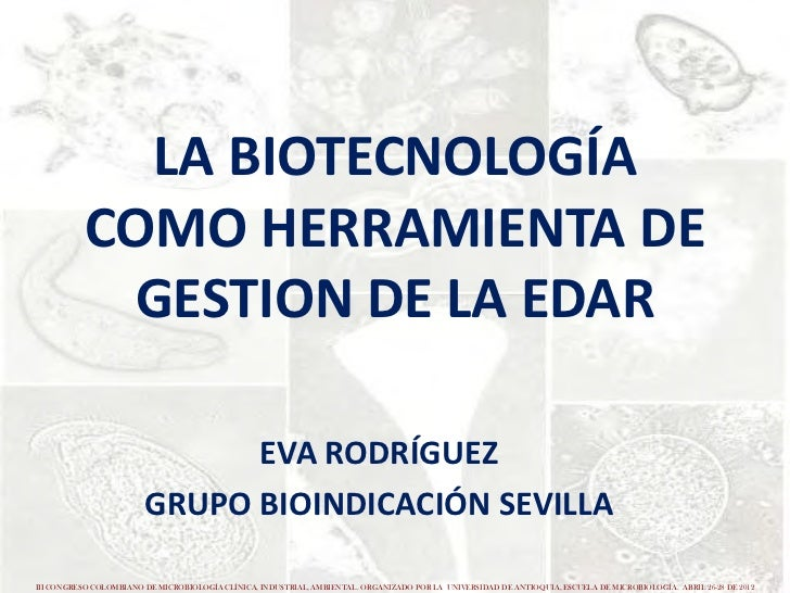 LA BIOTECNOLOGÍA           COMO HERRAMIENTA DE            GESTION DE LA EDAR                              EVA RODRÍGUEZ   ...