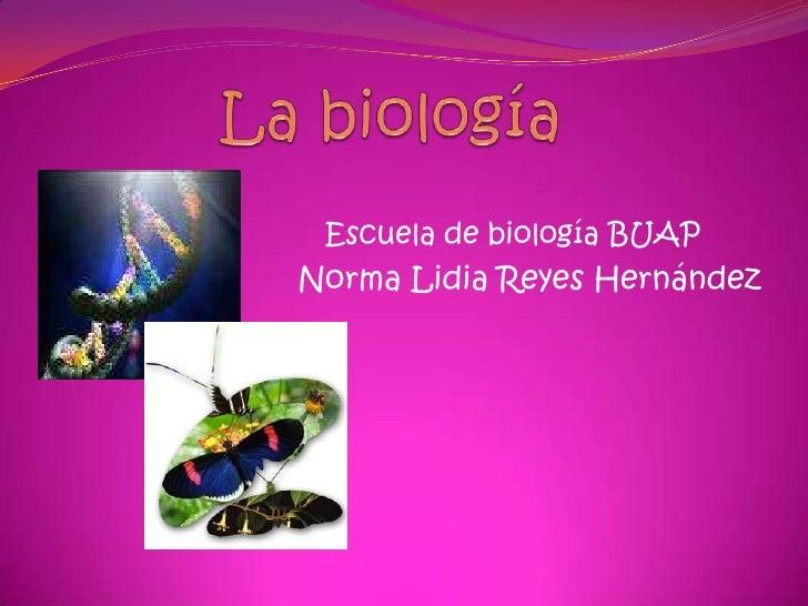La biología<br />Escuela de biología BUAP<br />Norma Lidia Reyes Hernández<br />