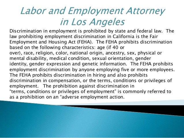employment labor and anti discrimination law essay