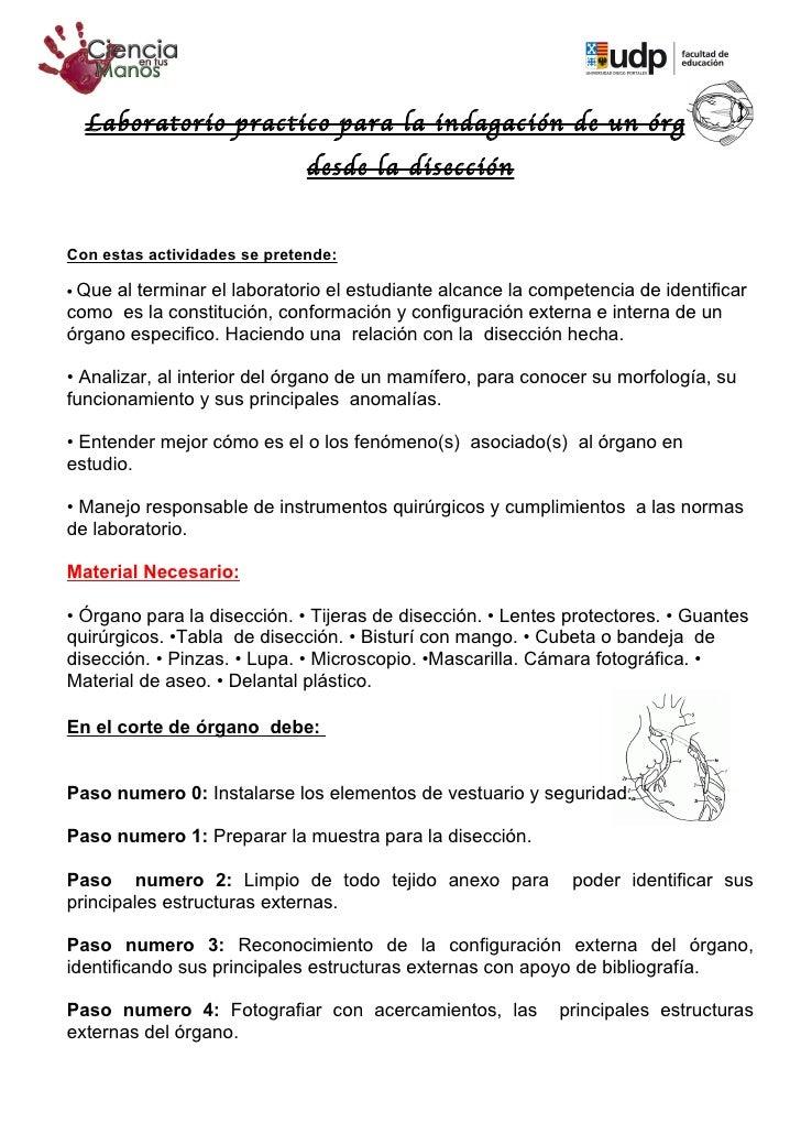 Laboratorio practico para la indagación de un órgano,                              desde la disecciónCon estas actividades...