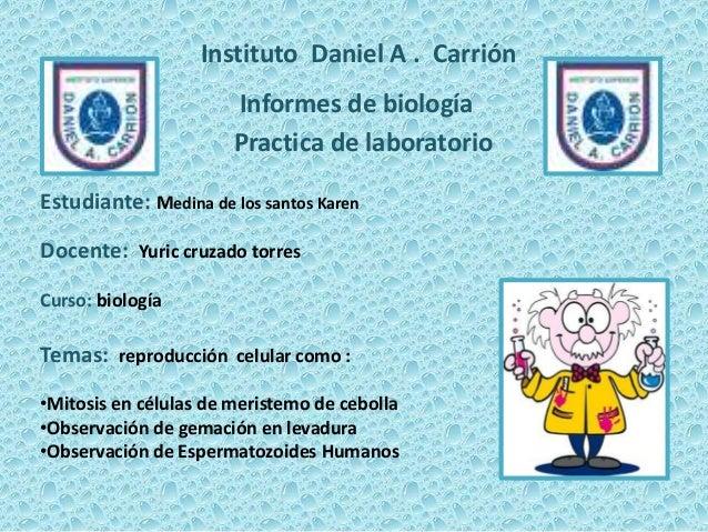Instituto Daniel A . Carrión  Informes de biología Practica de laboratorio Estudiante: Medina de los santos Karen  Docente...