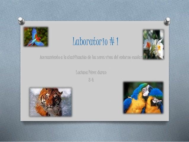 Laboratorio # 1 Acercamiento a la clasificación de los seres vivos del entorno escolar. Luciana Pérez duran 8-4