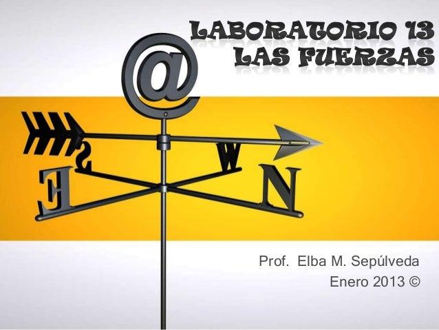 Prof. Elba M. Sepúlveda           Enero 2013 ©