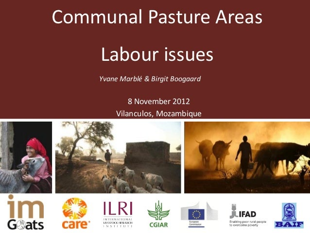 Communal pasture areas: Labour issues