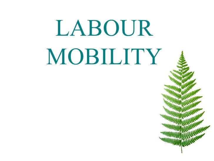 Labour Mobiliti Dr Jakie