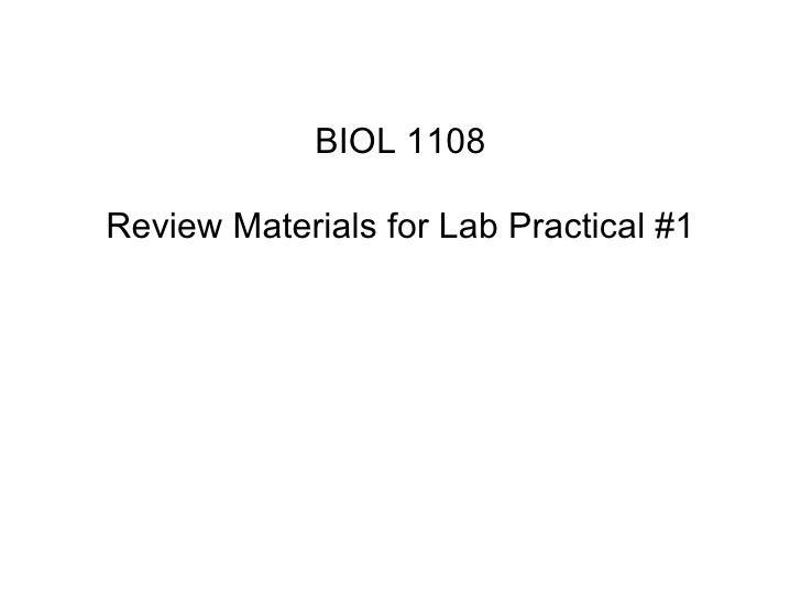 Lab Study Guide