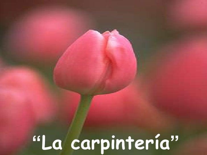 """""""La carpintería""""<br />"""