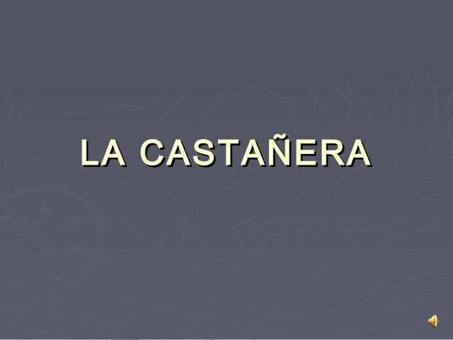 LA CASTAÑERALA CASTAÑERA