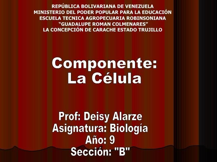 REPÚBLICA BOLIVARIANA DE VENEZUELA  MINISTERIO DEL PODER POPULAR PARA LA EDUCACIÓN  ESCUELA TECNICA AGROPECUARIA ROBINSONI...