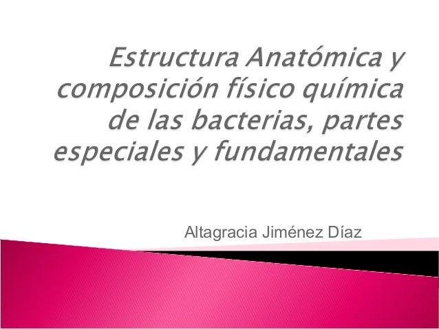 Altagracia Jiménez Díaz