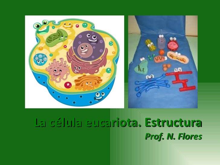 La célula eucariota. Estructura Prof. N. Flores