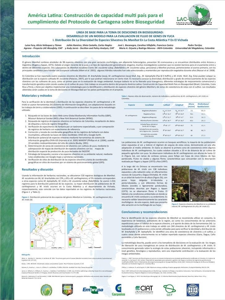 Poster44: América Latina: Construcción de capacidad multi país para el cumplimiento del protocolo de Cartagena sobre biose...