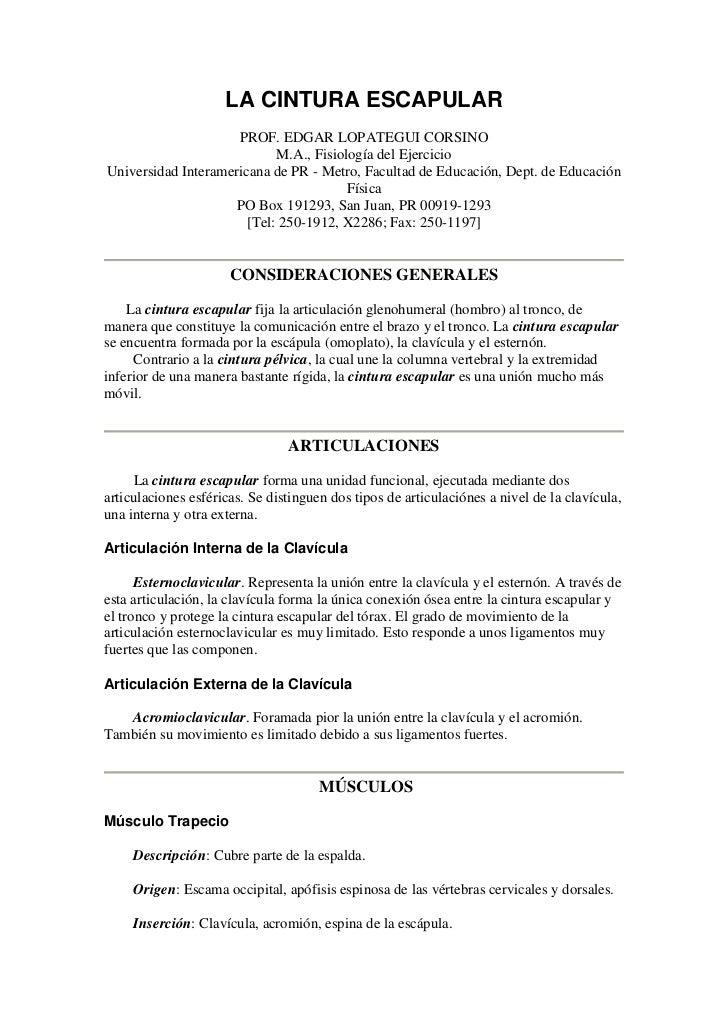LA CINTURA ESCAPULAR                     PROF. EDGAR LOPATEGUI CORSINO                            M.A., Fisiología del Eje...