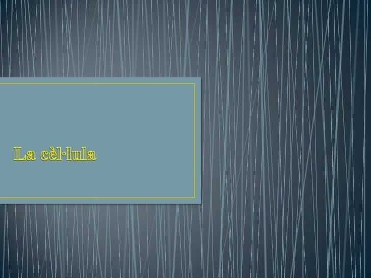 ÍNDEX    IntroduccióUna mica d'historia Tipus de cèl·lulaParts de la cèl·lula