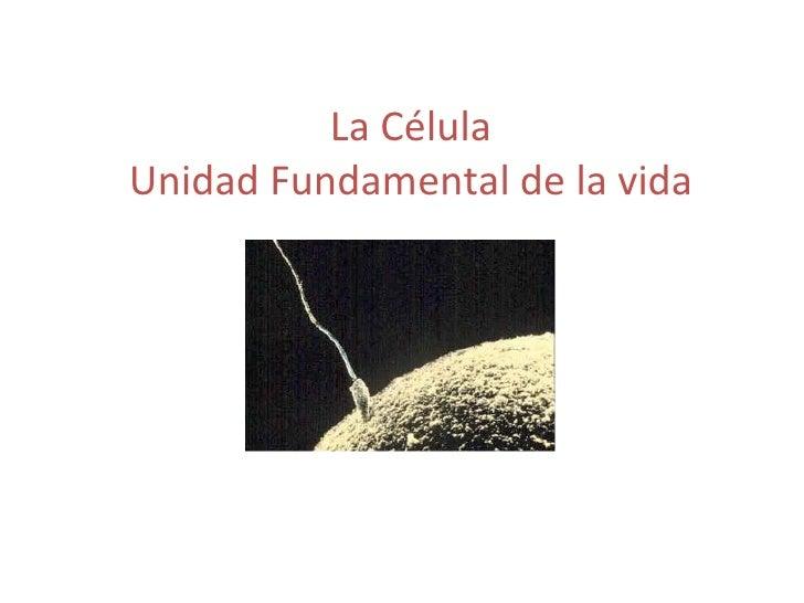 La Célula Unidad Fundamental de la vida
