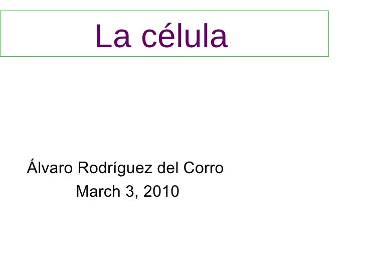 La célula   Álvaro Rodríguez del Corro  March 3, 2010