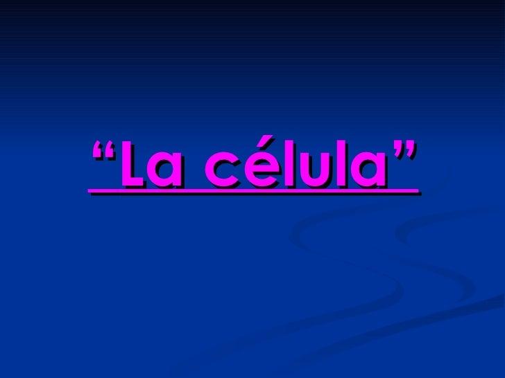 """""""La célula"""""""