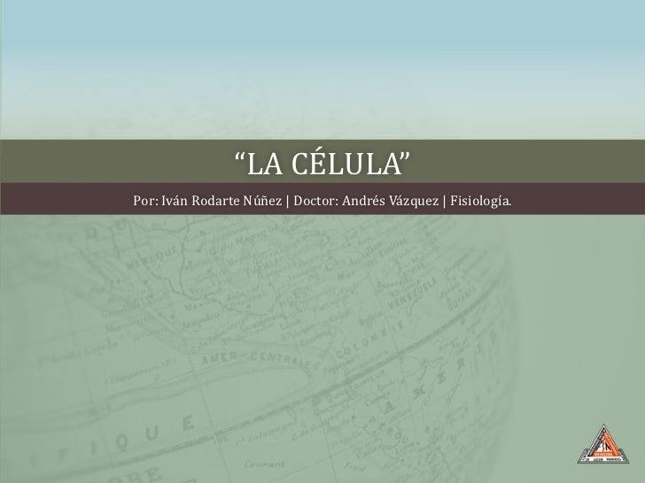 """""""LA CÉLULA""""Por: Iván Rodarte Núñez   Doctor: Andrés Vázquez   Fisiología."""