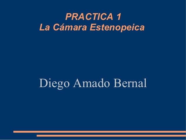 PRACTICA 1La Cámara EstenopeicaDiego Amado Bernal