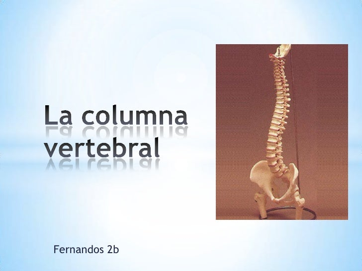 Fernandos 2b