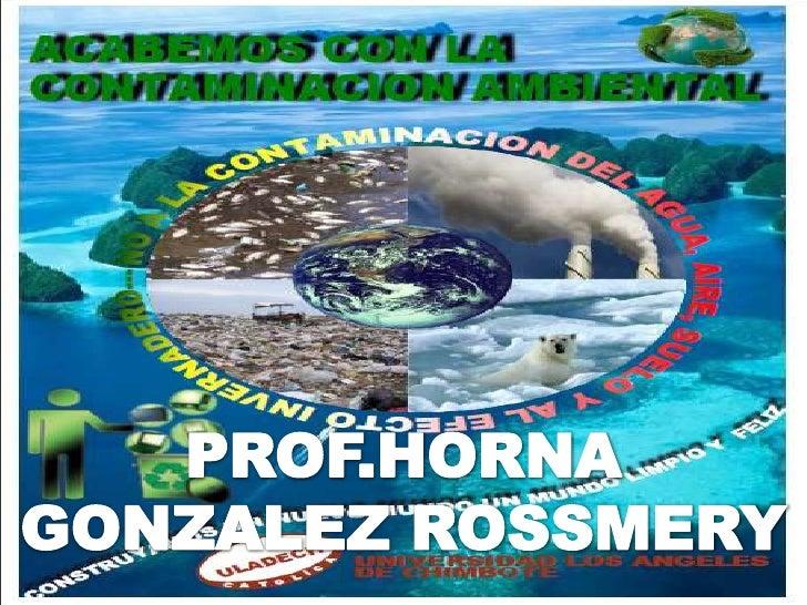 PROF.HORNA GONZALEZ ROSSMERY<br />