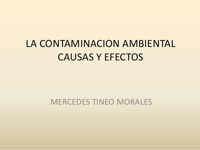 LA CONTAMINACION AMBIENTAL      CAUSAS Y EFECTOS    MERCEDES TINEO MORALES