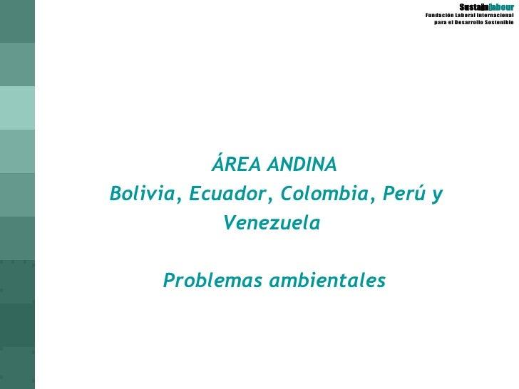 ÁREA ANDINA Bolivia, Ecuador, Colombia, Perú y Venezuela  Problemas ambientales