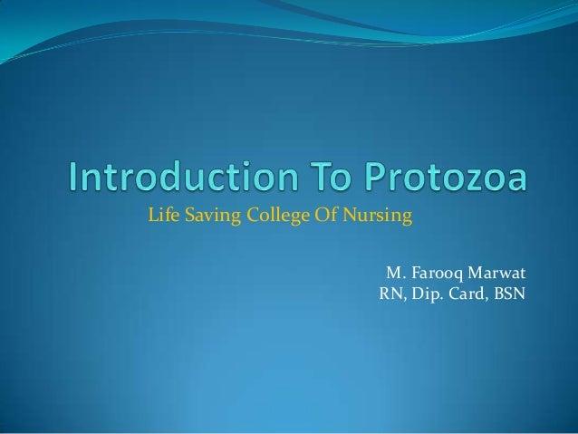 Life Saving College Of Nursing M. Farooq Marwat RN, Dip. Card, BSN