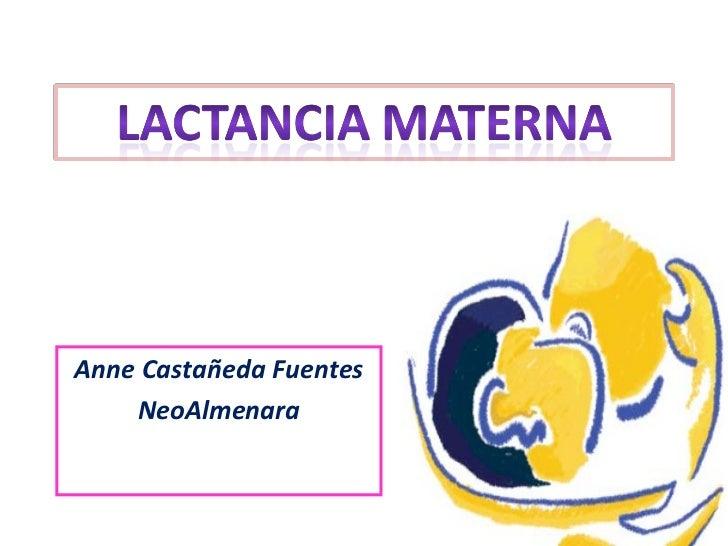 Lactancia materna  2011 2