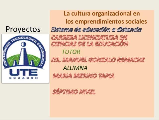Proyectos La cultura organizacional en los emprendimientos sociales