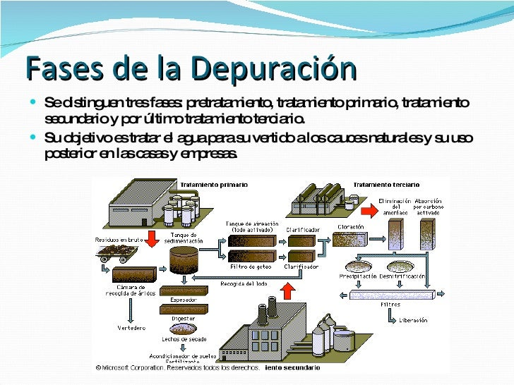 La depuradora de aguas residuales for Depuradora aguas residuales